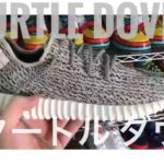 BUTTER MOVEMENT LOST FOOTAGE YEEZY 350 TURTLE DOVES ・失われた映像 アディダス イージー 350 タートル ダヴ [スニーカー sneakers]