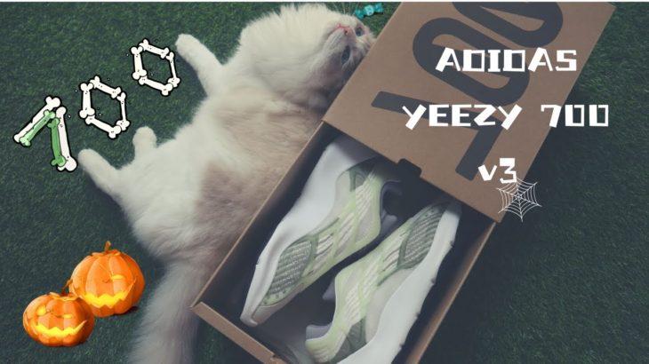 Yeezy  700 v3 UNBOXING