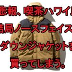 【2019AW】マウンテンダウンジャケットブリティッシュカーキを購入した話【ノースフェイス】
