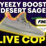 Sneaker Bot Live Cop! Yeezy 350 Desert Sage   Project Destroyer & Splash Force