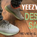 YEEZY 350 DESERT SAGE REVIEW AND ON FEET