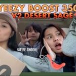 YEEZY BOOST 350 V2 DESERT SAGE ADIDAS UNBOXING & REVIEW + ON FEET | cheschyns