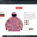 Supreme SS20 Week 13 – Live cop Supreme x The North Face Jackect (copped something 🔥)