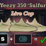 Yeezy 350 Sulfur Live Cop   COOKOUT   Splashforce, AYCD Autosolve