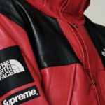 The North Face x Supreme Leather Mountain Parka Aliexpress