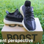 Adidas Yeezy 350 v2 CARBON | ARE THEY WORTH IT?!