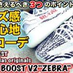 """【スニーカーレビュー】YEEZYの重要なポイントを徹底解剖!!サイズ感&コーデもバッチリ!!【KANYE WEST × adidas YEEZY BOOST350 V2 """"ZEBRA""""】"""
