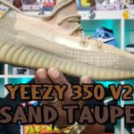 Adidas Yeezy 350 v2 Sand Taupe🔥🔥🔥 Review and On Foot!!!