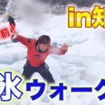 ドライスーツで流氷ウォーク!!地平線まで続く流氷の景色に感動しつつ、落ちるか落ちないかの綱渡りのようなドキドキ感も格別でした〜!(2021/2/12)