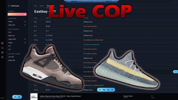 WhatBot Adidas Yeezy Boost 350 v2 Ash Blue & Air Jordan Retro 4 Taupe Haze Live Cop Overview