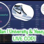 NSB & DASHE  YEEZY 450 & Jordan 1 UNIVERISITY  LIVE COP!