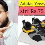 Review of Replica of Yeezy 700,Harmeet Wadhwa Shoes co,From Amazon just at Rs.599