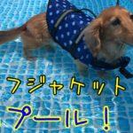 ライフジャケット着て初プール!!色々あったけど楽しかった日♡2021/06/20
