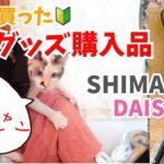 【釣りグッズ購入品紹介】ダイソー SHIMANO ライフジャケット  【初心者 サビキ釣り】