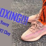 Bstsneakers Adidas Yeezy Boost 350 V2 Clay Unboxing+Review+On Foot